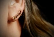 Kõrvarõngad 59